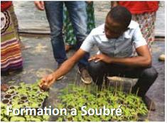 Formation a Soubre